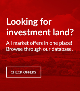 Looking for investment land